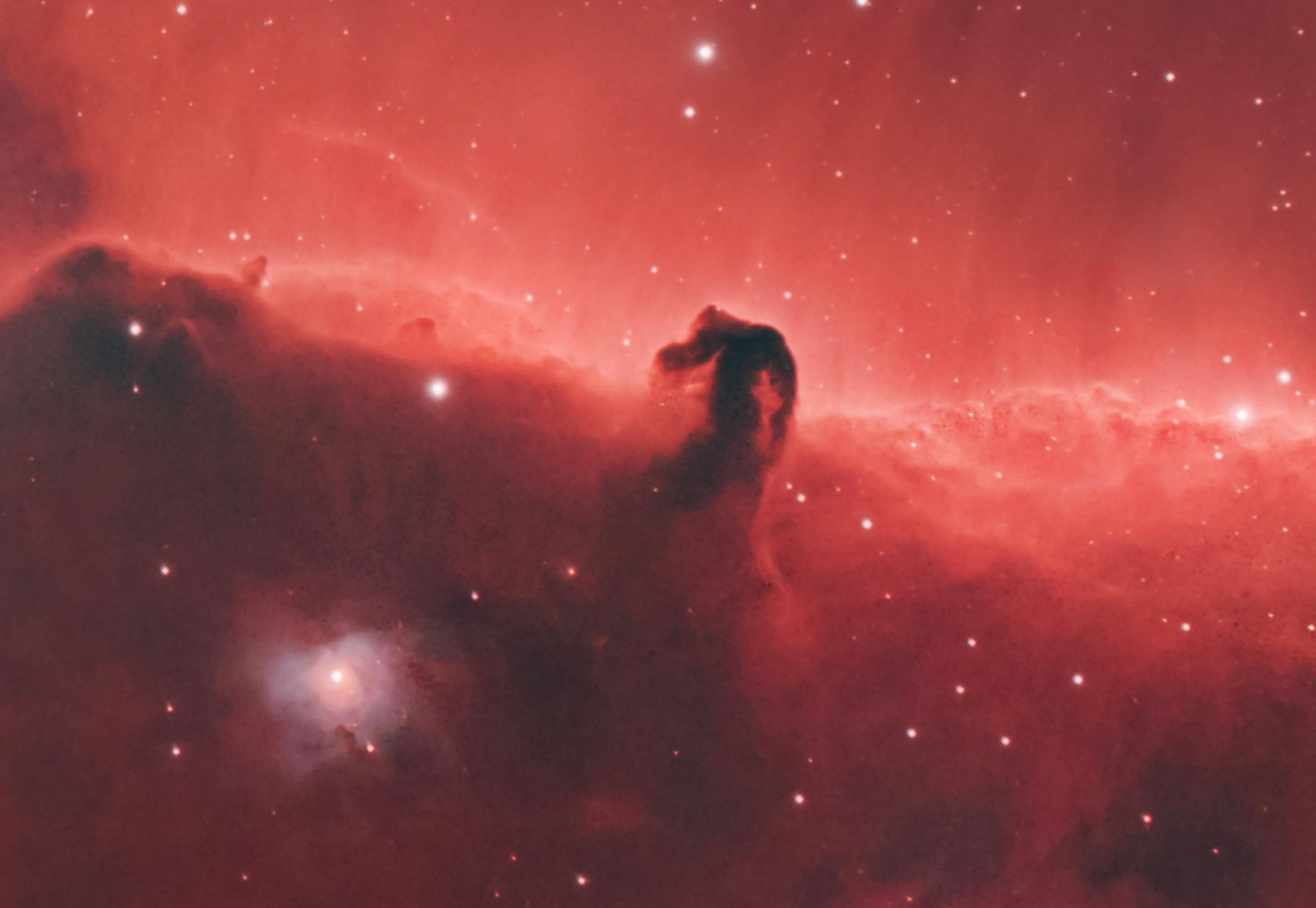 B33, IC434 and NGC2023 close up (crop),                                Roy Hagen