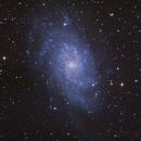 M33 - Pinwheel / Triangulum Galaxy,                                seigell