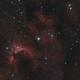 Cave nébula , SH2-155,                                echosud