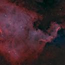 NGC 7000 HOO.,                                Marvaz