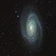 M81,                                mlewis