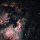 North America Nebula,                                Mateus