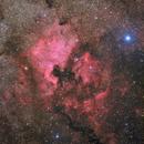 North America Nebula - Deep Sky West Remote Observatory,                                Deep Sky West (Lloyd)