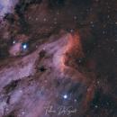 Pelican Nebula HOO,                                FedericoDS
