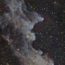 Witch Head Nebula,                                Ignacio Diaz Bobillo