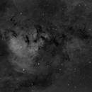 NGC 7822,                                alphaastro (Rüdiger)