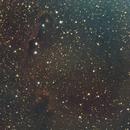 Elephants Trunk Nebula,                                Shawn Harvey