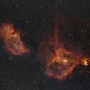 Heart and Soul Nebulae Complex,                                Pawel Zgrzebnicki