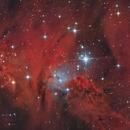 Nebulosa Cono Ha/RRGB,                                mirko tondinelli