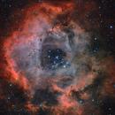 NGC2237 - Rosette Nebula - HaRGB (re-edit),                                Dennis Sprinkle
