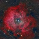 NGC-2238 The Rosette Nebula,                                Eric Kallgren
