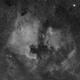North America Nebula and Pelican,                                Carastro