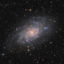 M 33 - Triangulum Galaxy,                                Robert Eder