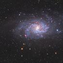 Galassia del Triangolo M 33,                                Gianluca Enne