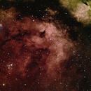 Gamma Cygnus Nebula,                                samlising