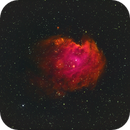 Monkeyhead Nebula,                                FantomoFantomof
