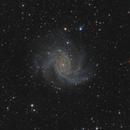 NGC 6946 - Fireworks Galaxy,                                Falk Schiel