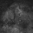 IC1396 - The Elephants Trunk Nebula in H-Alpha,                                Derek Ford