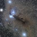 Anteater Nebula,                                Julian Shaw