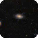 Messier 81 & Messier 82,                                Steve Siedentop