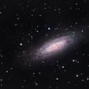 NGC 6503 Galaxy on Edge,                                Ian Gorin