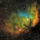 Sh2-101 - The Tulip Nebula,                                DocRx