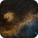 IC 2177  Seagull Nebula,                                Albert  Christensen