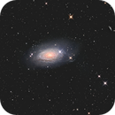 M63-The Sunflower Galaxy,                                VulpescuChristian