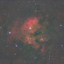 Cedarblad 214,                                Seldom