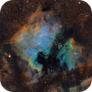The North America and Pelican Nebula in SHO,                                Marcel Nowaczyk