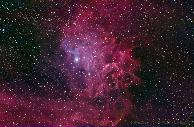 Flaming Star Nebula (IC-405) Test,                                Miles Zhou