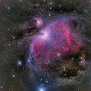 M42 - Orion Nebula,                                Siegfried