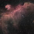 IC 2177 - Seagull Nebula - H-Alpha - DSLR RGB,                                Wolfgang Zimmermann