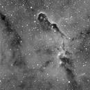 IC1396,                                alegret