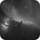 Horsehead and Flame Nebulae in H-Alpha (2 hours),                                David Nguyen