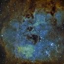 IC 410 - The Tadpoles,                                Timothy Martin & Nic Patridge