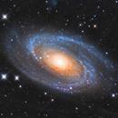M81 Bode's Galaxy,                                Lluis Romero Ventura