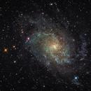 "M 33 - First light test of TPO 6"" f6 Newtonian,                                  Vic"