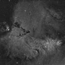 Cone nebula NGC2264 & christmas tree cluster Ha.,                                lukfer