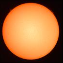 Sun in H-Alpha 29.06.2020,                                Sergei Sankov