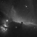IC 434 B/W Łeb Konia,                                Borowy Misiek