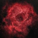Rosette Nebula (NGC2244),                                Patrick Pedersen