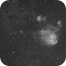 Running Chicken Nebula IC2944,                                Newton Cesar Florencio