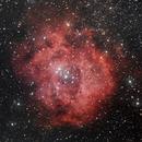 Rosette nebula (NGC 2244) Crop version,                                Lukas Šalkauskas