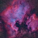 The North America & Pelican Nebulae,                                David Dvali