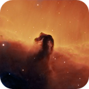 IC 434, Horsehead Nebula, Hubble Palette,                                Eric Coles (coles44)