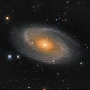 M81,                                Mike Kline
