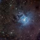 Iris Nebula (NGC7023),                                Miles Zhou