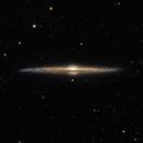 The Needle Galaxy 2021,                                Alex Roberts