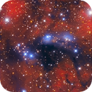 NGC 6914, a blue jewel encrusted in red tapestry,                                Salvatore Iovene